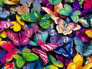 mariposas-de-colores
